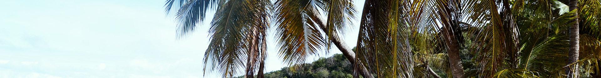Vacance Guadeloupe
